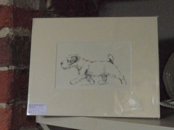 Terrier in motion, 1930's print by K F Barker - Ter B24